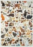 Papíry na decoupage - kočky