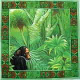 Ubrousek zvířata - opice