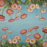Ubrousek květiny - sedmikrásky