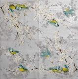 Ubrousek ptáci - modřinky