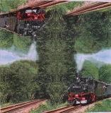 Ubrousek zátiší - parní vlak