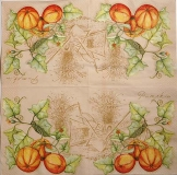 Ubrousek zelenina - pumpkin