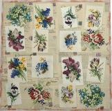 Ubrousek květiny - květiny mix lyrics