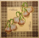 Ubrousek zelenina - česnek kostky