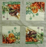 Ubrousek zelenina - druhy cibule
