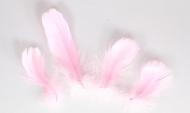 Husí peříčka růžová - 4 ks