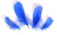 Husí peříčka tmavě modrá - 4 ks