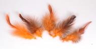 Bažantí pírka oranžová - 5 ks
