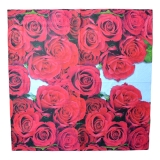 Ubrousek květiny - rudé růže