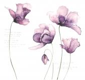 Papír na scrapbooking - fialové tulipány