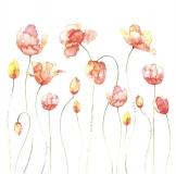 Papír na scrapbooking - oranžové tulipány