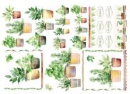 Rýžový papír na decoupage - bylinky