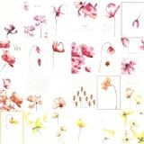 Papír na scrapbooking - květinové kartičky