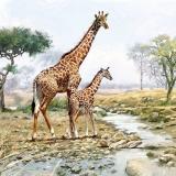 Ubrousek 33x33 - Žirafa s mládětem