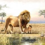 Ubrousek 33x33 - Lev s mládětem