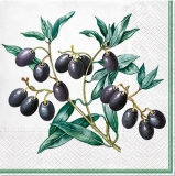 Ubrousek 33x33 - Olivy na větvičce