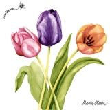 Ubrousek 33x33 - barevné Tulipány