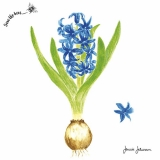 Ubrousek 33x33 - Hyacinth