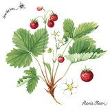 Ubrousek 33x33 - Lesní jahody