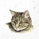 Ubrousek 33x33 - Zvířata na statku Kočka
