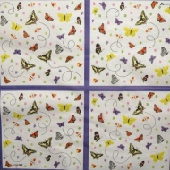 Ubrousek brouci a motýli - motýlci