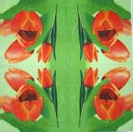 Ubrousek květiny - oranžové tulipány
