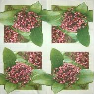 Ubrousek květiny - voskovka