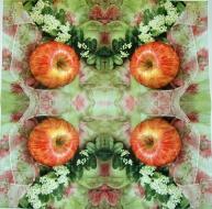 Ubrousek ovoce - jablko