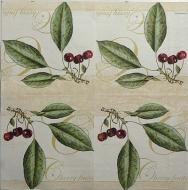 Ubrousek plody - cherry fruits