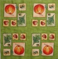 Ubrousek plody - žaludy, dýně