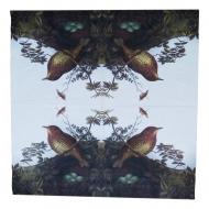 Ubrousek ptáci - ptačí hnízdo