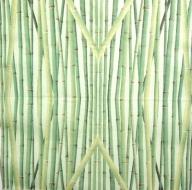 Ubrousek rostliny - bambus na zeleném