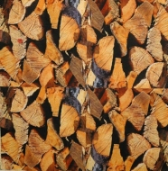 Ubrousek vzorovaný - dřevo