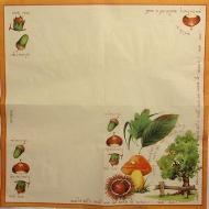 Ubrousek plody - plody podzimu