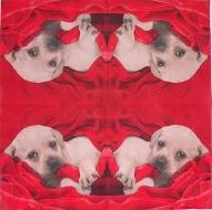 Ubrousek zvířata - štěně v sametu