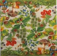 Ubrousek plody - lesní plody