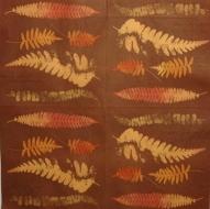 Ubrousek rostliny - listy kapradiny