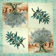 Ubrousek rostliny - olivovník