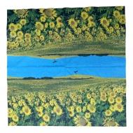 Ubrousek květiny - lán slunečnic