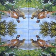 Ubrousek ptáci - bažant