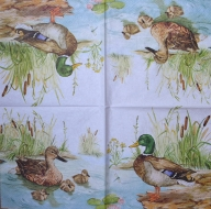 Ubrousek ptáci - kačenky