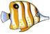 Magnety - ryba