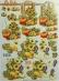 Papíry na decoupage 3D - slunečnice, dýně