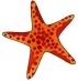 Předměty překližka - hvězdice